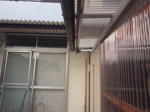 アシナガバチの巣が物置のドアのすぐ上に(郡山市).jpg