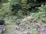 オオスズメバチの巣は倒木を重ねていた土手に(福島市、2010年9月中旬).jpg