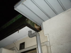 キイロスズメバチが壁の配管穴をふさいだ段ボールにベッタリ(郡山市、2010年9月下旬).jpg
