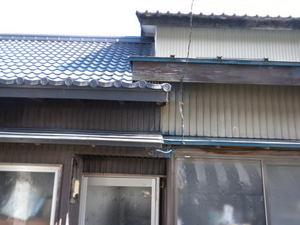 キイロスズメバチが軒下を出入り口に飛びまわる(福島県田村市、2010年10月上旬).jpg