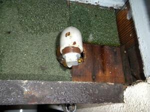 キイロスズメバチたちが出入りする壁の配管穴(郡山市、2010年9月下旬).jpg