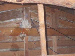 キイロスズメバチの屋根裏の巣を駆除・撤去した後の様子(郡山市).jpg