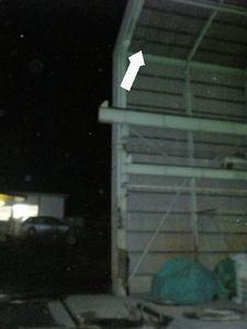 キイロスズメバチの巣が工場施設の高い屋根の下に(須賀川市、2010年10月中旬).jpg