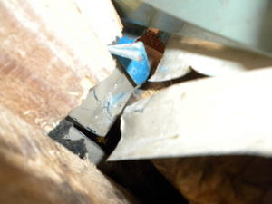 キイロスズメバチの巣の位置、推定をどうする?(福島県田村市、2010年10月上旬).jpg