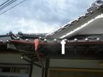 キイロスズメバチの巣は瓦屋根玄関の見えない所に(福島県田村市、2010年9月中旬).jpg