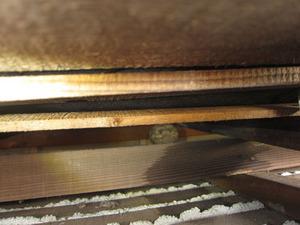 キイロスズメバチの玄関屋根の軒天に作った巣 会津若松市、7月中旬.jpg