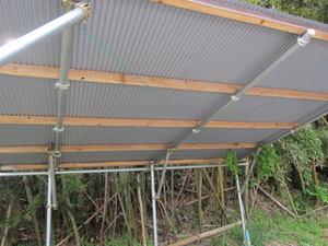 クマバチの巣穴が駐車場の屋根に 郡山市、2012年.jpg