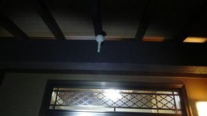 コガタスズメバチの典型的なトックリ型の初期巣がある玄関(郡山市).jpg