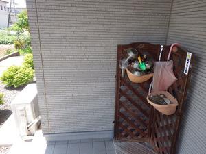 コガタスズメバチの女王蜂がうろついていた玄関(伊達市).jpg