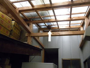 コガタスズメバチの巣が住居奥の天井に(福島県東白川郡、2010年9月中旬).jpg