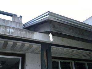 スズメバチが中学校の教室軒下から舞い降りる(福島県田村郡、2010年9月下旬).jpg