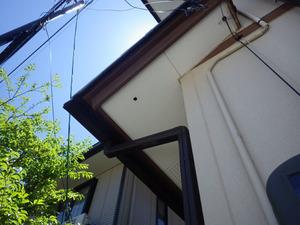 スズメバチが出入りする小さな穴がある軒天(郡山市).jpg