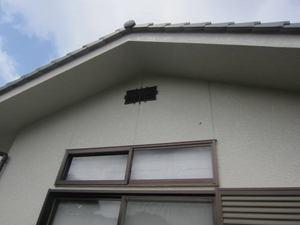 スズメバチが出入りする通気口 須賀川市、2012年.jpg