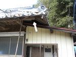 スズメバチたちが屋根と屋根の重なった所から出入り(福島県伊達市、2010年9月中旬).jpg