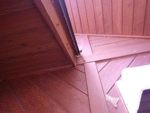 スズメバチたちが玄関の屋根と壁との接点のすき間から出り(福島県天栄村).jpg