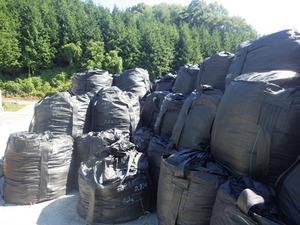 スズメバチの巣があった除染作業で出た放射性廃棄物を保管する仮置き場(田村市).jpg