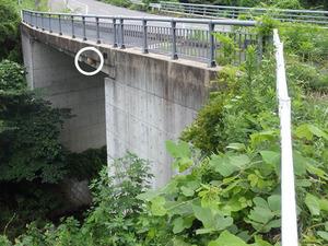 スズメバチの巣がある橋桁(福島県三春町).jpg
