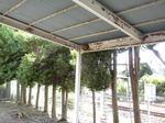 スズメバチの巣は車庫天井の隅っこに(福島県西白河郡、2010年9月中旬).jpg