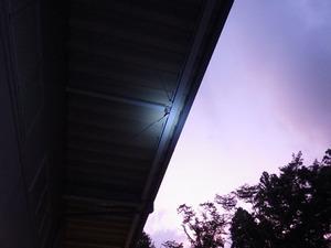 スズメバチの巣は高さ7mほどの軒先(福島県本宮市).jpg