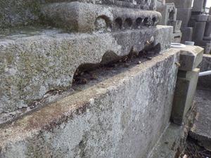 ニホンミツバチがお墓の納骨室に巣を作っています 須賀川市、4月18日.jpg