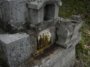 ミツバチがお墓の納骨室に作った巣(須賀川市、2010年4月20日).jpg
