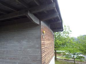 三春町でスズメバチの引っ越し巣の駆除現場.jpg