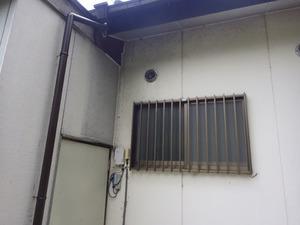二本松市でスズメバチ駆除の現場-母巣.jpg