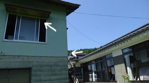 大玉村でスズメバチ駆除の現場-母巣と引っ越し巣の位置.jpg
