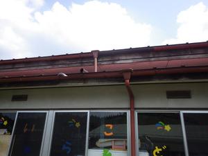 幼稚園でスズメバチに刺された現場(福島県平田村).jpg