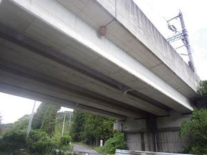 東北新幹線高架橋のスズメバチの巣(福島県).jpg