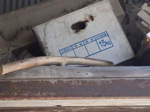 泉崎村でみかん箱にスズメバチが出入り.jpg