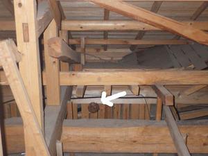 玉川村で天井裏のスズメバチの巣.jpg