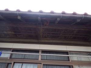 田村市でスズメバチ駆除の現場.jpg