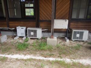 田村市で壁の中のスズメバチ駆除.jpg