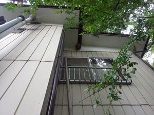 白河市で2階軒下のスズメバチ駆除.jpg