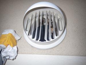 石川町で換気口の中にアシナガバチの巣.jpg