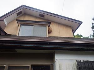 磐梯町でスズメバチ駆除の現場.jpg