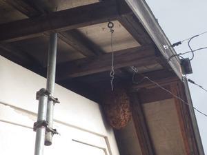福島市で軒下のスズメバチの巣.jpg
