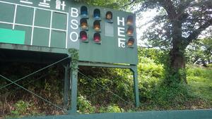 郡山市でスズメバチの巣駆除の現場.jpg