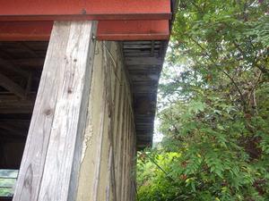 郡山市でスズメバチ駆除の現場-農機具庫.jpg