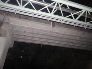郡山市で橋の下から見たスズメバチの巣.jpg