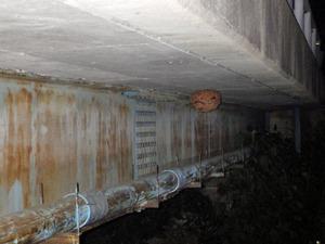 郡山市で橋の下のスズメバチの巣.jpg