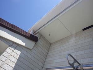 郡山市で蜂の巣駆除の現場.jpg