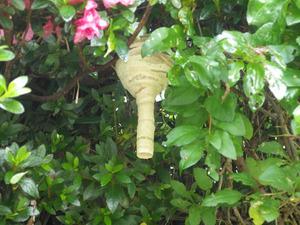 郡山市で雑木のスズメバチの巣.jpg