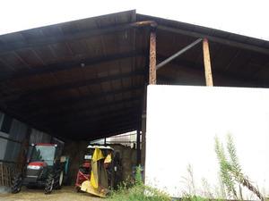 郡山市で高所のスズメバチ駆除の現場.jpg