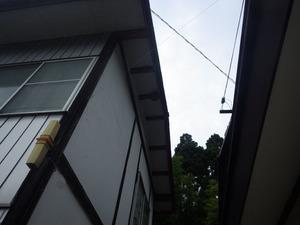 2階建ての家の一番高い所にあったスズメバチの巣(二本松市).jpg