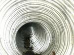 キイロスズメバチの巣の一部が奥の方に見える(福島県郡山市、2009年7月13日).jpg