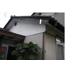 スズメバチが瓦屋根のすき間から頻繁に出入り(福島県田村市、2009年8月上旬).jpg
