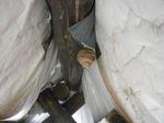 テントの天井に作ったコガタスズメバチの巣(福島県田村市、2009年7月19日).jpg