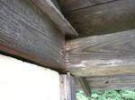 ニホンミツバチが頻繁に出入りしていた土塀のすき間(福島県田村郡、2009年7月下旬).jpg